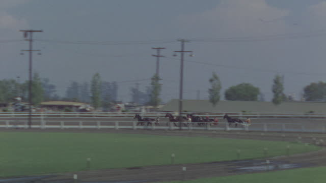 MS TS Shot of harness race and large audience fills stands