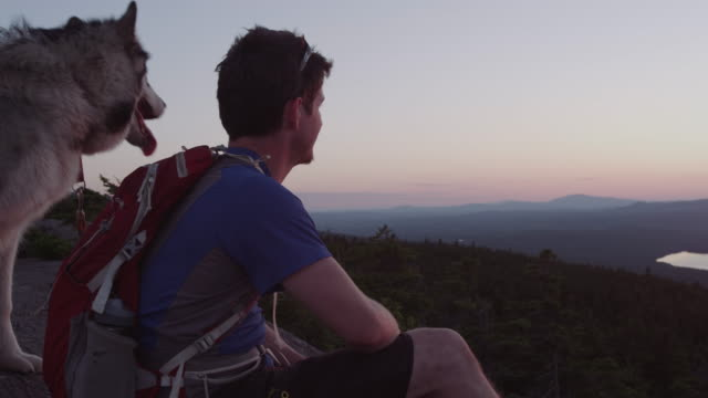 ms pan shot of hiker resting to take in view with his dog on top of peak in 100 mile wilderness of northern / maine, united states  - top garment stock videos & royalty-free footage