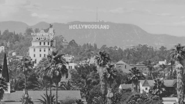 ws pan shot of hollywood land sign and palm trees in ground. - hollywood sign stock videos & royalty-free footage