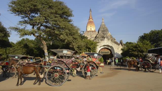 vídeos y material grabado en eventos de stock de ms shot of horse carriages arriving at entrance of ananda pagoda with people / bagan, mandalay division, myanmar - grupo pequeño de animales