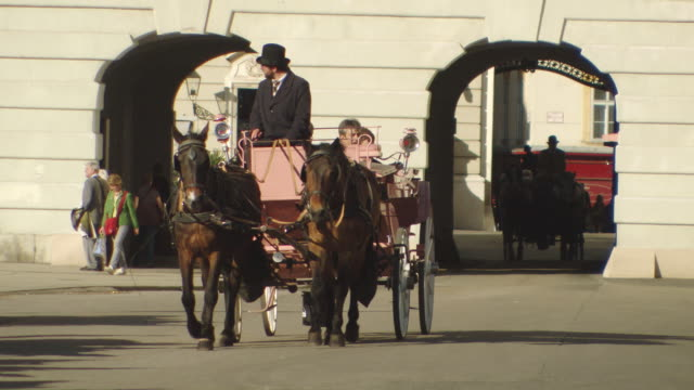 stockvideo's en b-roll-footage met ms pan shot of horse cart moving at michaelerplatz / vienna, austria - paardenkar