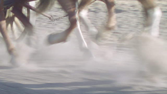 CU TS Shot of horse running from dirt road