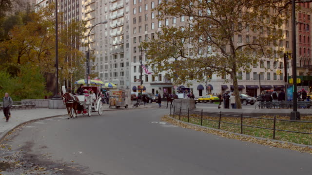 shot of horse-drawn carriages approaching in central park, new york city - arbeitstier stock-videos und b-roll-filmmaterial