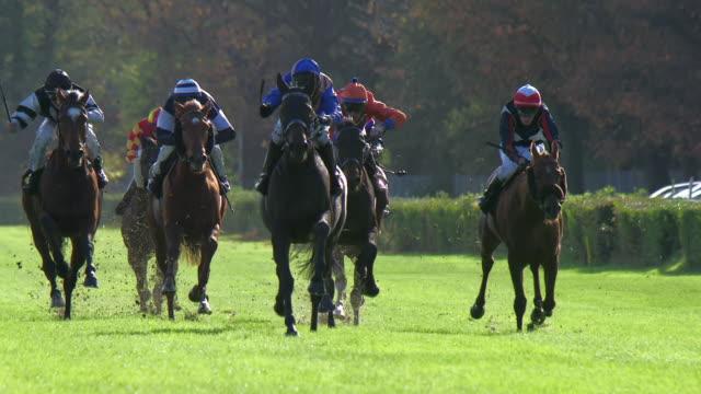 ws slo mo shot of horses gallop down home stretch / krefeld, north rhine westphalia, germany  - horse racing stock videos & royalty-free footage