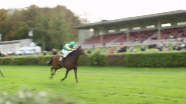 vídeos y material grabado en eventos de stock de ms ts shot of horses racing by right before finish / krefeld, north rhine westphalia, germany  - fundido en negro