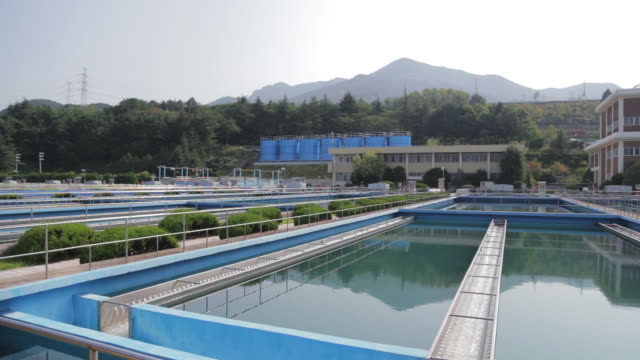 shot of hwamyeong water purification plant at busan - water plant stock videos and b-roll footage