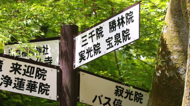 cu shot of information sign board for sanzen in temple under momiji leaves / ohara, kyoto, japan - information sign stock videos & royalty-free footage