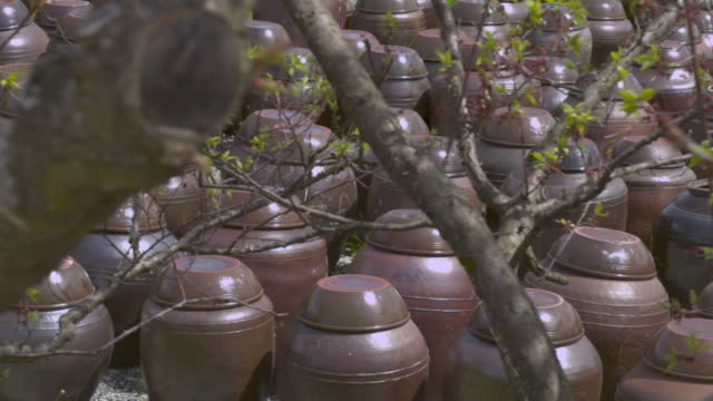 shot of jang dok dae (korean earthenware jar for fermenting food) - fermenting stock videos and b-roll footage
