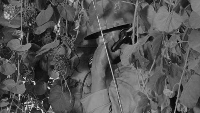 cu shot of japanese soldier hiding in bushes and talking on phone - traditional helmet stock videos and b-roll footage