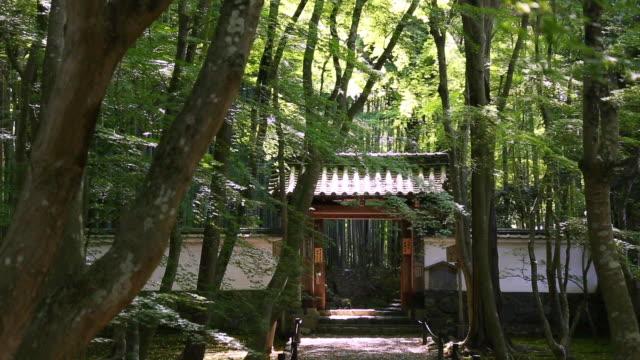 ms shot of jizo in temple surrounded by trees / nishikyo ku, kyoto, japan - 建物入口点の映像素材/bロール