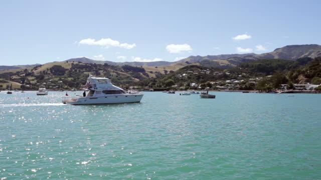ms shot of katamaran boat / akaroa, new zealand - akaroa stock videos & royalty-free footage