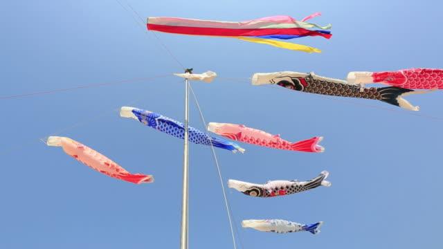 ms pan shot of koinobori, carp streamers flying in wind / matsue, tottori prefecture, japan  - kindertag stock-videos und b-roll-filmmaterial
