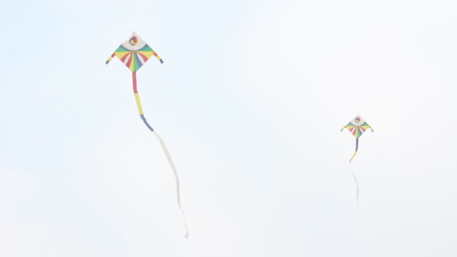 Shot of Korean Traditional Kite