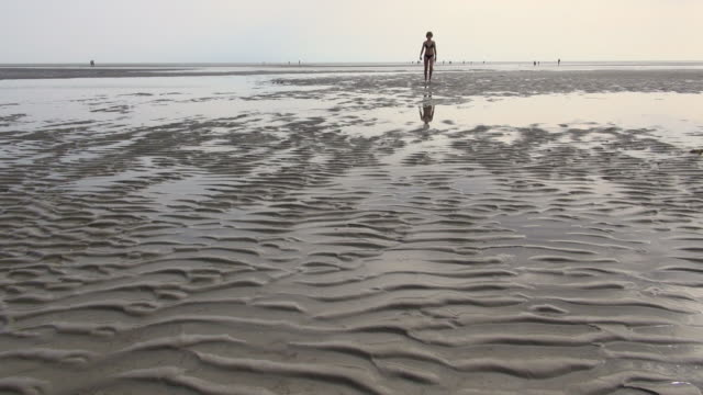 WS Shot of lady walking down in sea ebb tide at wadden sea, North Sea North Frisia, / St. Peter Ording, Schleswig Holstein, Germany
