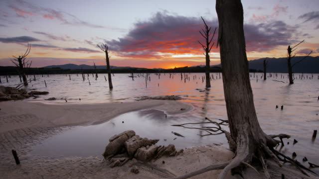 WS T/L Shot of lake scene with dead trees being lit up by rising sun Theewaterskloof Dam / Villiersdorp, Western Cape, South Africa
