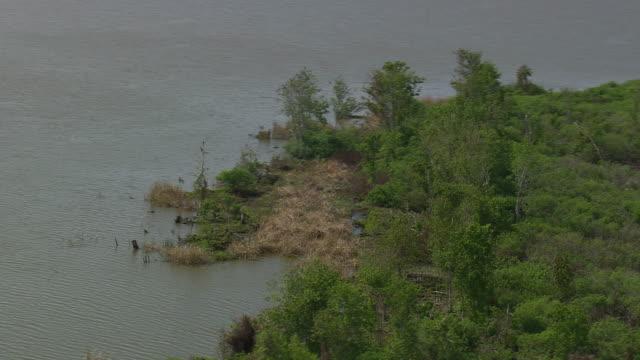 aerial ws shot of lake sore / florida, united states - utfällda vingar bildbanksvideor och videomaterial från bakom kulisserna