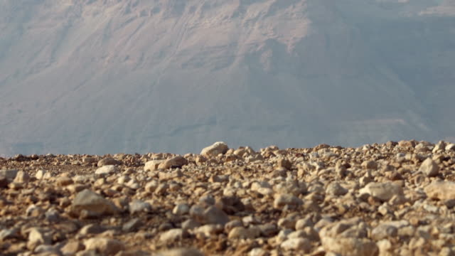 ECU TU Shot of large rocks on ground to Masada in Negev desert / Israel
