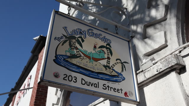 cu shot of lazy gecko sign / key west, florida, united states - western script stock videos & royalty-free footage