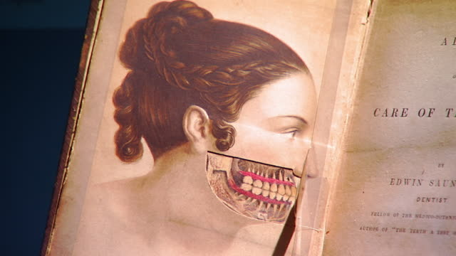 MS PAN Shot of Le page to illustration of human jaws in book Care of Teeth by Queen Victorias personal dentist Edwin Saunders  / Baltimore, Maryland, United States