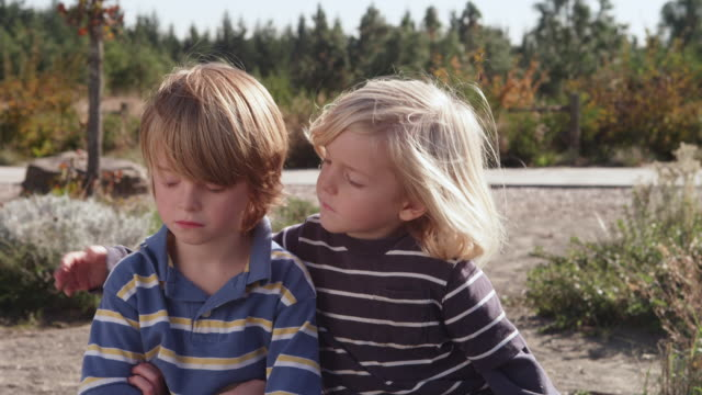 vídeos de stock e filmes b-roll de ms slo mo shot of little boy comforts and hugs his brother and friend who is sad / beaverton, oregon, united states - irmão
