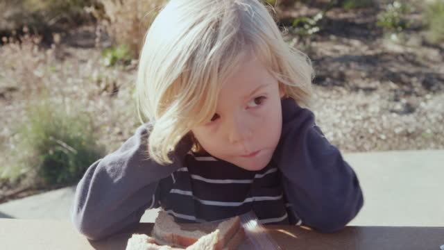 cu shot of little boy enjoying his healthy peanut butter and jelly sandwich outside on sunny day / beaverton, oregon, united states - sandwich stock-videos und b-roll-filmmaterial