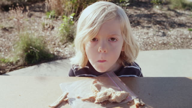 cu shot of little boy enjoying his healthy peanut butter and jelly sandwich outside on sunny day / beaverton, oregon, united states - hungry stock videos and b-roll footage