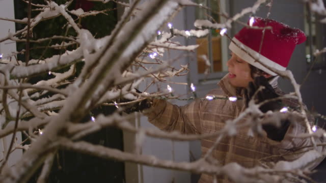CU Shot of little boy setting lights on outdoor Christmas tree / Yarmouth, Maine, United States