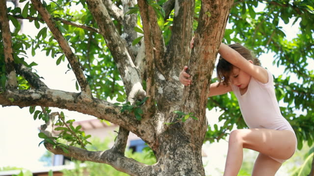 MS TD Shot of little girl in ballet leotard climbing down tree in tropical environment / Montezuma, Punteranes, Costa Rica