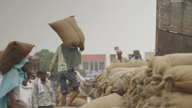 ms ts shot of loading rice trucks / new delhi, india - sack stock videos & royalty-free footage
