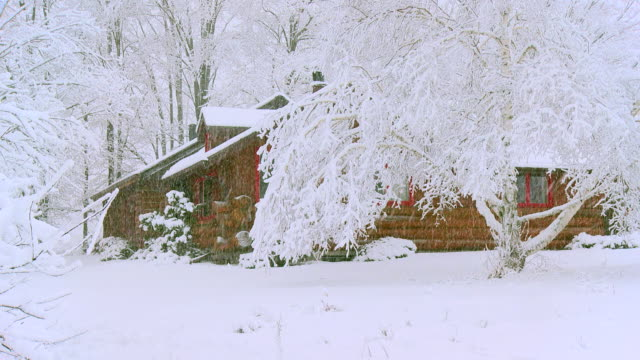 WS Shot of Log cabin in snow storm / Tweed, Ontario, Canada