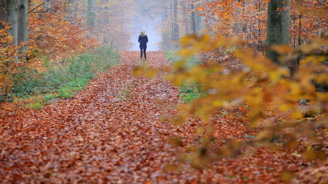 MS Shot of lonely woman walking through autumnal woodland / Orscholz, Saarland, Germany