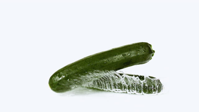 cu slo mo shot of long courgette or zucchini, cucurbita pepo, vegetable falling on water against white background / calvados, normandy, france - courgette stock videos and b-roll footage