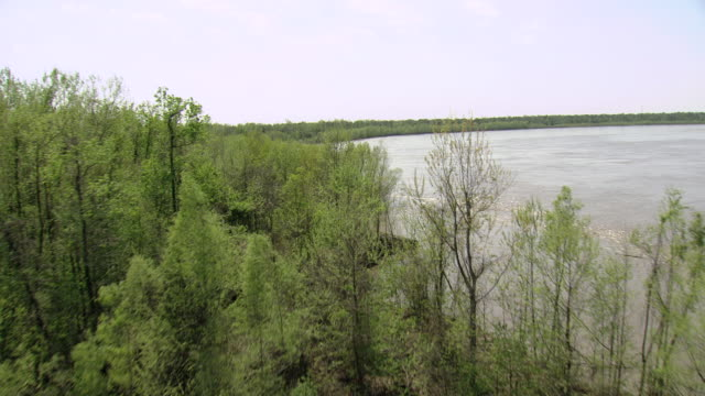 ms aerial shot of low over edge of atchafalaya river / louisiana, united states - fluss red river stock-videos und b-roll-filmmaterial