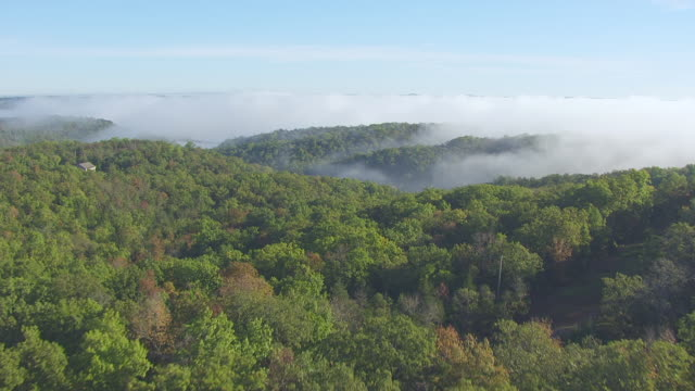 MS AERIAL TU Shot of low over grass and forest with low hanging clouds in Prairie State Park / Missouri, United States