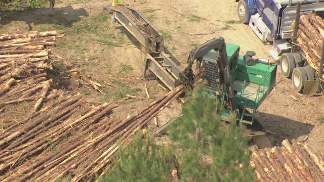 MS AERIAL Shot of machine dragging lumber into back of truck in broad daylight / Mississippi, United States