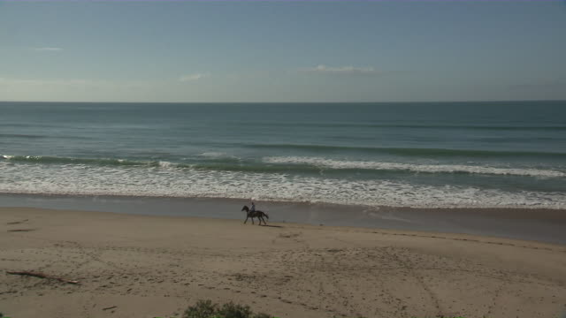 ws pan shot of man horse riding on beach / east coast, new zealand - recreational horse riding stock videos & royalty-free footage