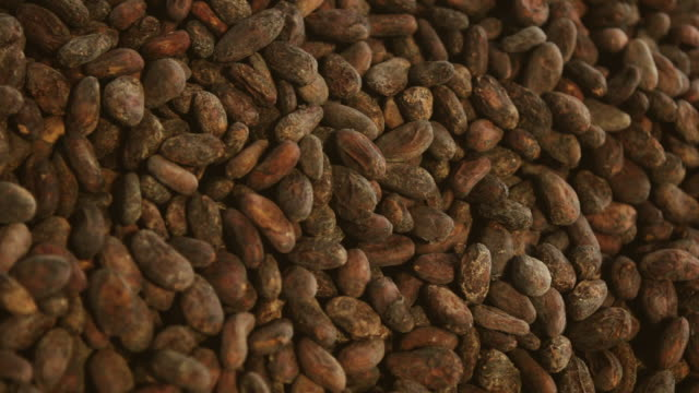 cu shot of man moving hand in large pile of roasted cocoa beans / kauai, hawaii, united states - hot chocolate stock videos and b-roll footage