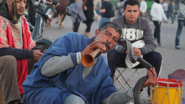 stockvideo's en b-roll-footage met ms shot of man playing flute and holding cobra in streets / fes, centro-north, morocco - wiese