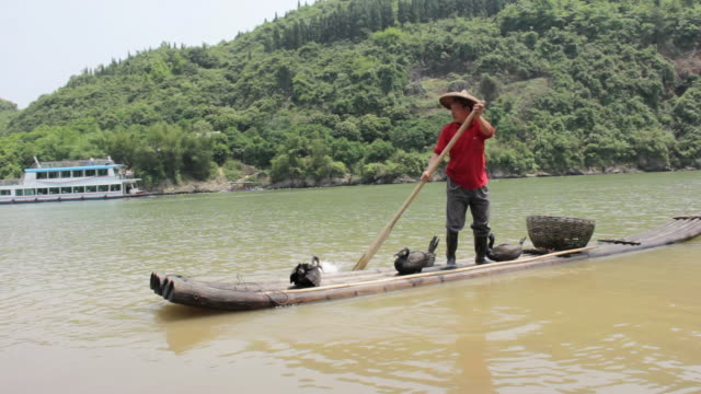ms shot of man playing with paddle of traditional boat / close to li river, guangxi, china - one mid adult man only stock videos & royalty-free footage