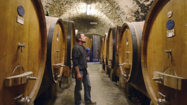 MS Shot of man works in wine cellar / Castellina in Chianti, Tuscany, Italy