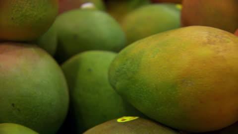 ecu pan shot of mangoes tracking / sydney, new south wales, australia - mango fruit stock videos & royalty-free footage