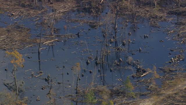 ms aerial shot of marsh / south carolina, united states - 湿地点の映像素材/bロール