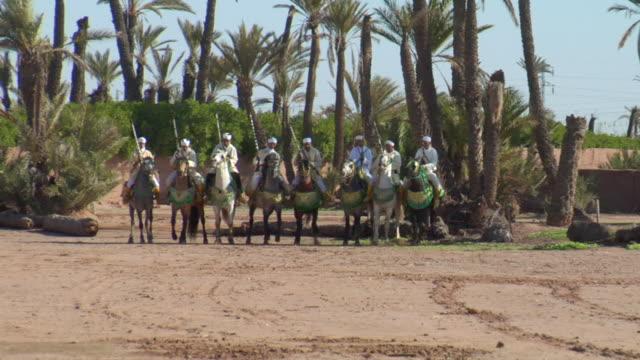 vidéos et rushes de ms shot of men horseback performing fantasia towards / marrakech, tensift, morocco  - wiese