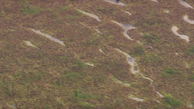cu aerial zo shot of moor region at schwarz moor / germany - moor stock videos and b-roll footage