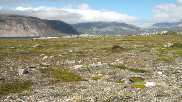 stockvideo's en b-roll-footage met ws shot of mountains with river and blue sky / torgat mtns, labrador, canada - wiese