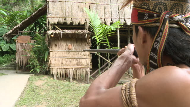 MS ZI Shot of Murut man using traditional blow pipe / Kota Kinabalu, Sabah, Malaysia