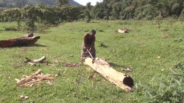 vídeos de stock e filmes b-roll de ms shot of natice batwa woman swinging axe at large log / kigez, kabale, uganda - wiese