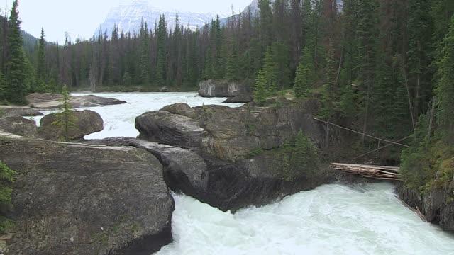 MS Shot of Natural Bridge / Yoho Nationalpark, British Columbia, Canada