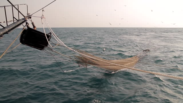 ws pov shot of net half submerged / northern territory, australia - fishing industry stock videos & royalty-free footage