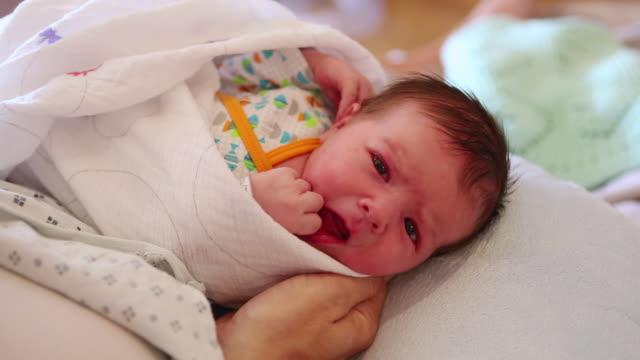 cu shot of newborn baby / lamy, new mexico, united states - eingewickelt stock-videos und b-roll-filmmaterial
